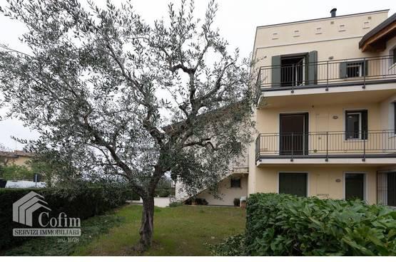 Appartamento bilocale Bardolino MD0034